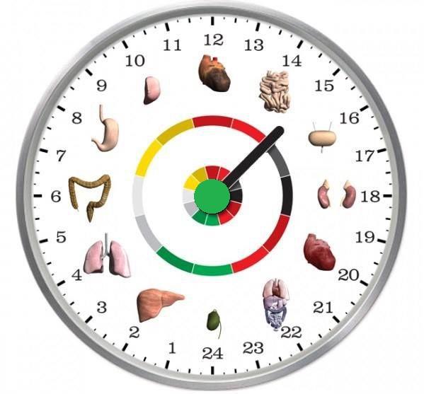 ceasul biologic și pierderea în greutate